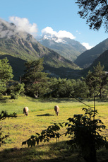 Sattgrüne Weiden und zauberhafte Gipfel erwarten uns im Aigüestortes-Nationalpark