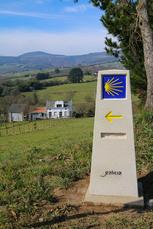 Galicien ist sooo unglaublich grün und das selbst im Wintermonat Februar!