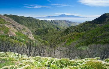 DAS Fotomotiv der Kanaren: Der Teide (Teneriffa) gleich auf der ersten Wanderung