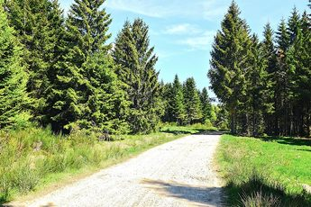 Der Naturpark Pilat ist nahezu menschenleer und von dichten Wäldern überzogen.
