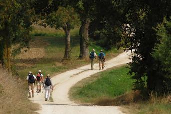 Sehr oft führen die Wanderungen auf der Via Gebennensis auf schönen Feldwegen,…