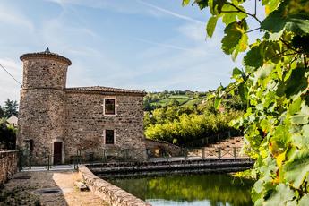 Das mittelalterliche Prachstädtchen Cavanay liegt idyllisch am Fuße eines solchen Weinberges.