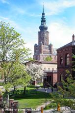 Die stolze Hansestadt Greifswald präsentiert sich im traditionellen Backstein-Gewand. Im Hintergrund der Dom St. Nicolai