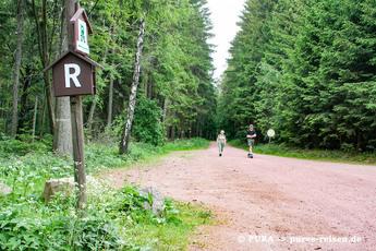 ..und durch die dichten Wälder des Thüringer Waldes und des Frankenwaldes.