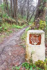 Hinter Grado erwartet dieser historische Jakobsweg-Wegstein den Pilger