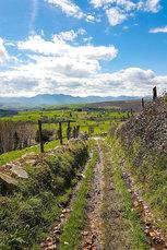 So grün, dass es schon fast in den Augen schmerzt: Asturien