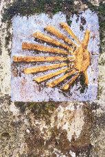 Die richtungsweisende Jakobsmuschel an einer vermoosten Mauer