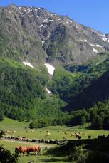 6. Tag: Die Abstiegswanderung nach Vielha ins Aran-Tal biete Fernblicke auf die idyllische Hochebene Artiga de Lin