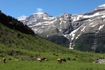 Der Felsenkessel im Pineta-Tal im Ordesa-Nationalpark