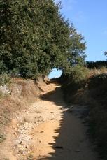 Der Jakobsweg auf der Strecke von Sarria nach Portomarin