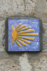 Das Pilgersymbol für alle die den Jakobsweg bestreiten. Die Jakobsmuschel