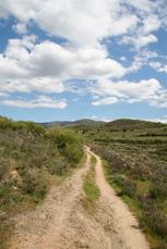 Der Jakobsweg vor Molinaseca