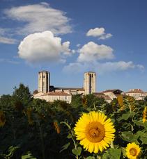 Collegiale Saint Pierre la Romieu