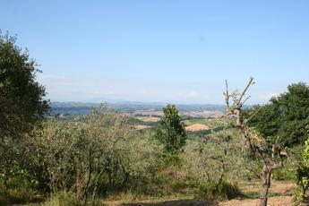 Landschaft in der Nähe von Gambassi