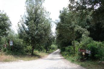 Wegweiser auf der Via Francigena