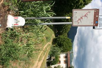 Markierung der Via Francigena