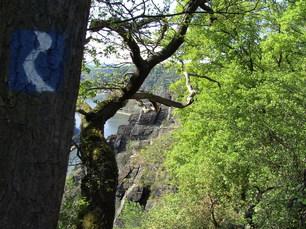 Rheinsteig Markierung