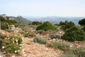 Blick vom Golgo-Hochplateu über den südlichen Naturpark