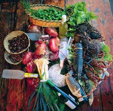 Block 3: Gastronomische Vielfalt Kantabriens